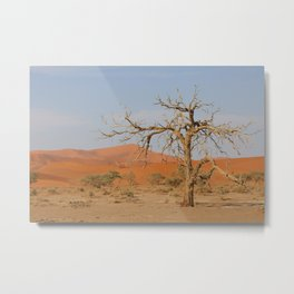 Namibia Desert with Sand Dunes Metal Print