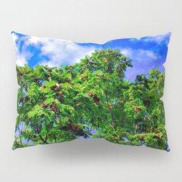 Where The Trees Meet The Sky Pillow Sham
