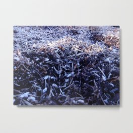 Mulch Much Metal Print