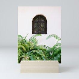 Santo Domingo window | Minimalistic botanical travel photography print | Dominican Republic wall art Mini Art Print
