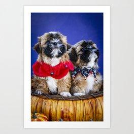 Two Shih Tzu Puppies Wearing Halloween Collars Pose in a Pumpkin Basket Art Print