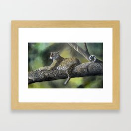 Painting of a Leopard on Branch  Framed Art Print