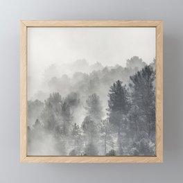 Yesterday.... Into the foogy woods Framed Mini Art Print