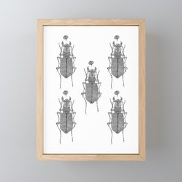 Black and white tiger beetle Framed Mini Art Print