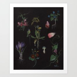 Botanical no.1 Art Print