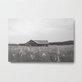 Barn in a Meadow Metal Print