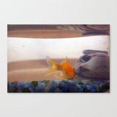 Fish mystery Canvas Print