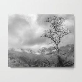 Mist in mountains Metal Print