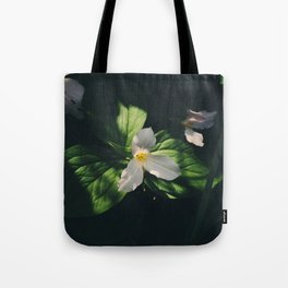 In the shadows the great white trillium blooms Tote Bag
