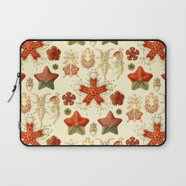 Ernst Haeckel - Scientific Illustration - Asteroidea Laptop Sleeve