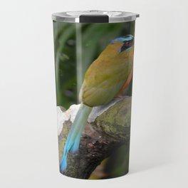 Motmot bird Travel Mug