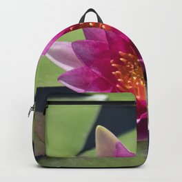 Longwood Gardens - Spring Series 305 Backpack