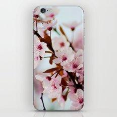 pink bloom iPhone & iPod Skin