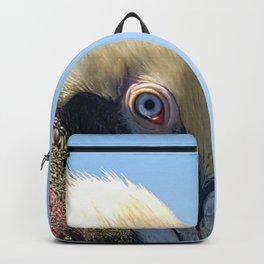 Fort Lauderdale Pier Pelican Backpack