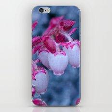 Pink Drops iPhone & iPod Skin