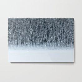 Winter Wander Metal Print