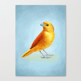 Wild Canary Canvas Print