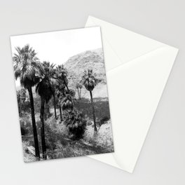 Palm Canyon near Palm Springs c.1901 Stationery Cards