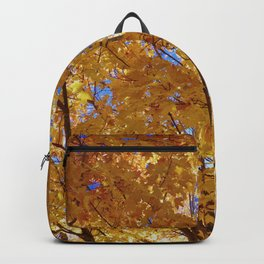 Falling into Light Backpack