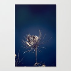 Before the Wind Blew Canvas Print