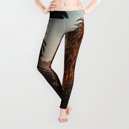 HOLLYWOOD Life, Sunset and Palm Trees Leggings