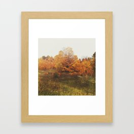 Out in the Wild Framed Art Print