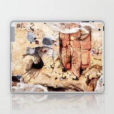 On Shore Breeze Alternate Laptop & iPad Skin