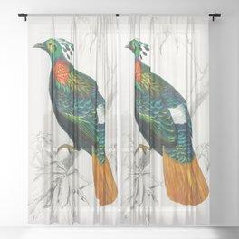 Bird Illustration Sheer Curtain