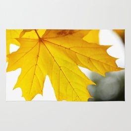 Yellow maple leaf. Rug
