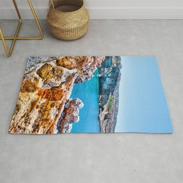in the sea  Rug