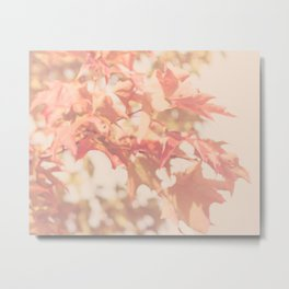 Autumnal Smile Metal Print