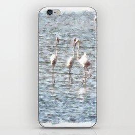 A Flamboyant Pat Of Flamingos iPhone Skin