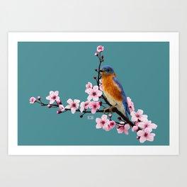 Eastern Bluebird and Cherry Blossom Art Print