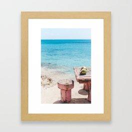 Coconuts on the Beach Framed Art Print