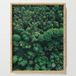 Trees from above | Forest fine art photography | Aerial drone photo print Serving Tray