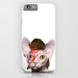 Bowie Cat iPhone Case