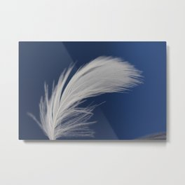 Lone Feather Metal Print