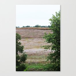 Looking out over the fields Canvas Print