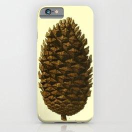 Botanical Pine Cones iPhone Case