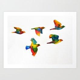 Rainbow Flight Art Print