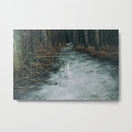 Dark woods, frozen path Metal Print