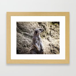Posing and Sniffing Framed Art Print