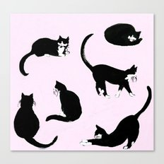 The Cats Meow Canvas Print