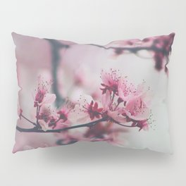 Pink Cherry Blossom On Branch Pillow Sham