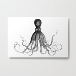 Black and White, Giant Octopus Poster, Octopus Art Print, Lord Bodner's Octopus, Lord Bodner Octopus, Nautical Octopus, Giant Octopus Poster, Nautical Art Metal Print