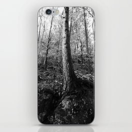 Forest black and white 8 iPhone Skin