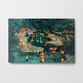 Flamingo Creek #flamingo #tropical #illustration Metal Print