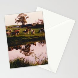 Cows in the Canal Stationery Cards