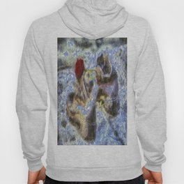 Shoes On The Danube Bank Van Gogh Hoody