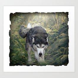 Wolf Forest Encounter Art Print